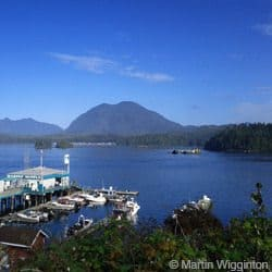 Travel apps Tofino