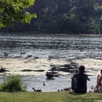 Top 5 Parks and Outdoor Spaces in Toronto