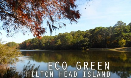 Eco Green Hilton Head Island, South Carolina