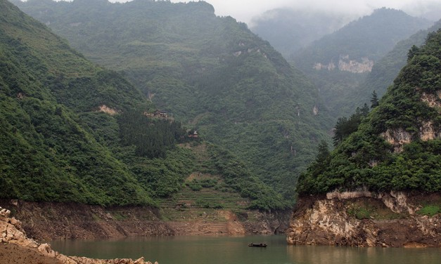 Dreams of Pandora: Touring the Shennongjia Forests in China