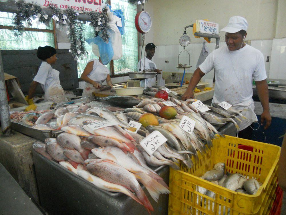 clearwater seafood essay Welcome to trade insights, export development canada's home for resources that will help guide you as you grow your business internationally.