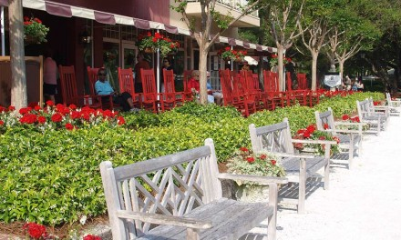 10 Reasons to Visit Hilton Head Island Before/After Your Cruise