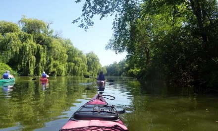 Kayaking Ellicott Creek New York with Paths Peaks & Paddles
