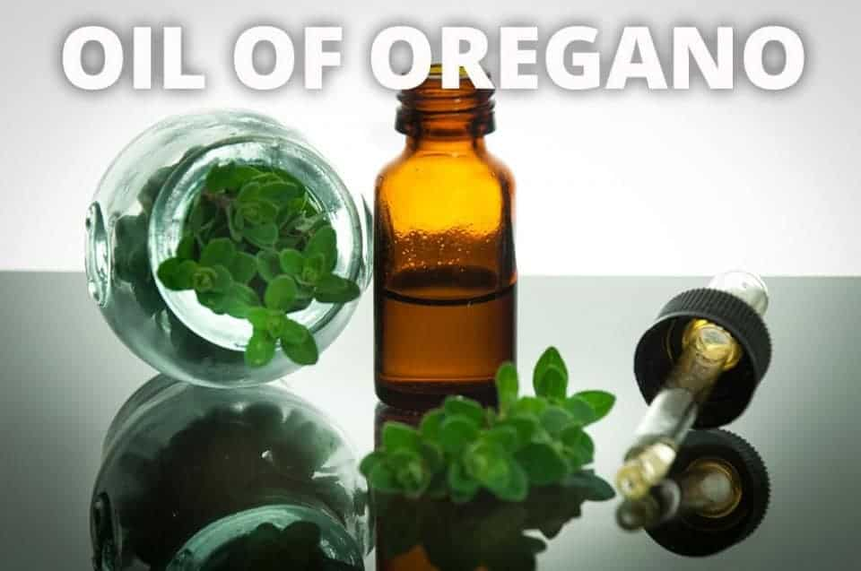 Pack this! 4 Natural Remedies for Travel Ailments - Oil of Oregano