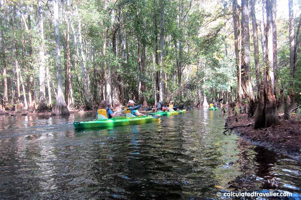 Kayaking Shingle Creek Kissimmee Florida