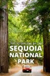15 Tips for Exploring Sequoia National Park by Car - Calculated Traveller | #NationalPark #USA #Sequoia #road #trip #car