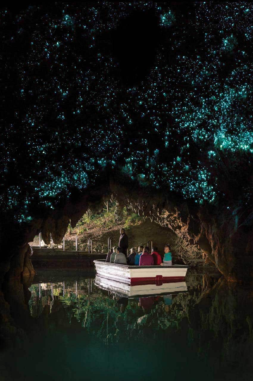 15 Recommended Things to Do in New Zealand - Touring the Waitomo Glowworms Cave by Calculated Traveller