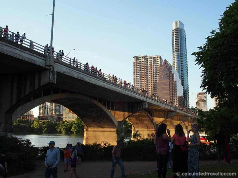 A Date with the Bats of Austin Texas