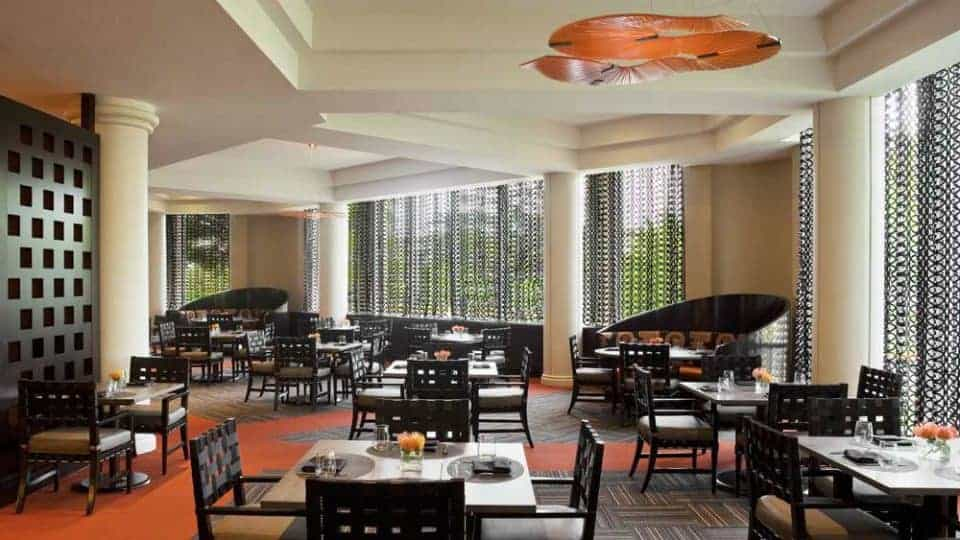 Sleepy Nights at Sheraton Tysons Hotel in Fairfax Virginia - Brix and Ale Restaurant