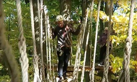 An Autumn Afternoon Treetop Trekking in Brampton Ontario