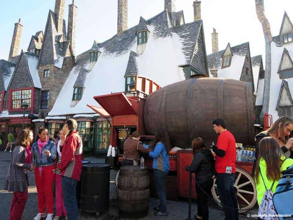 One day / Two parks Universal Studios Harry Potter Adventure - Butterbeer