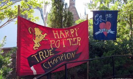 One day / Two parks Universal Studios Harry Potter Adventure