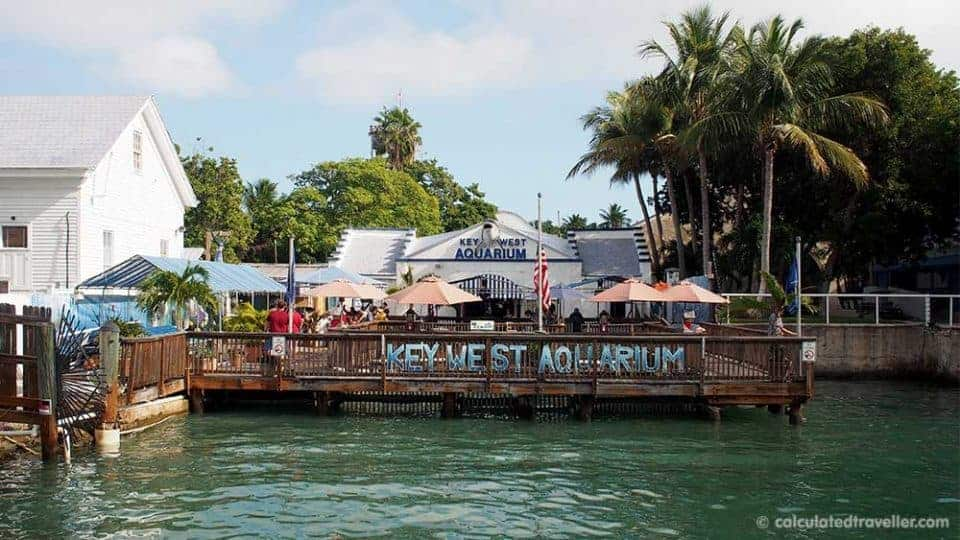 A One Day Key West Florida No Holds Barred Adventure! - Key West Aquarium