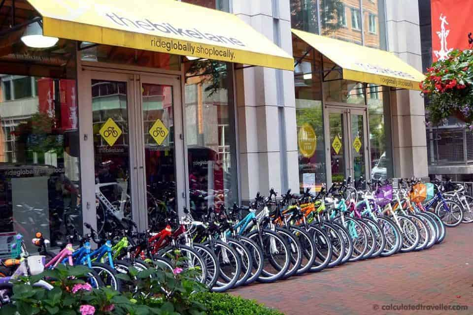 Surrey Bike Rental Virginia Beach