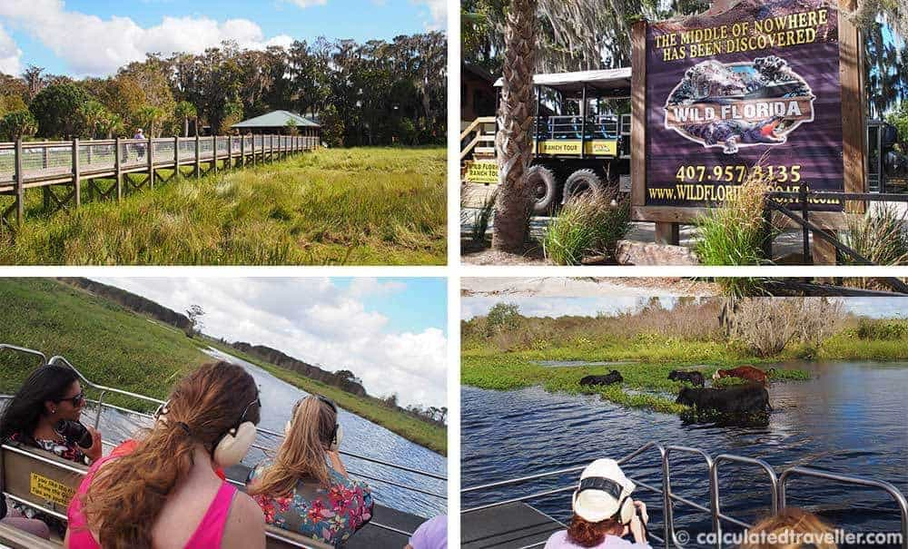 10 Things to do in Kissimmee Florida - Air boat ride with Wild Florida