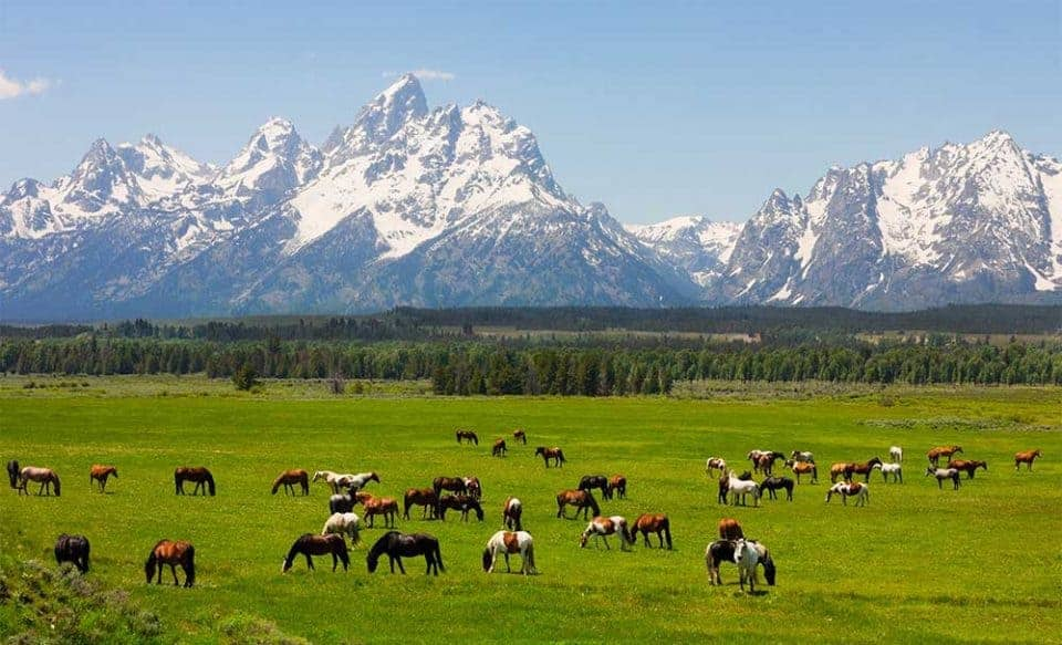10 Outstanding Destinations for Solo Travel - Wyoming
