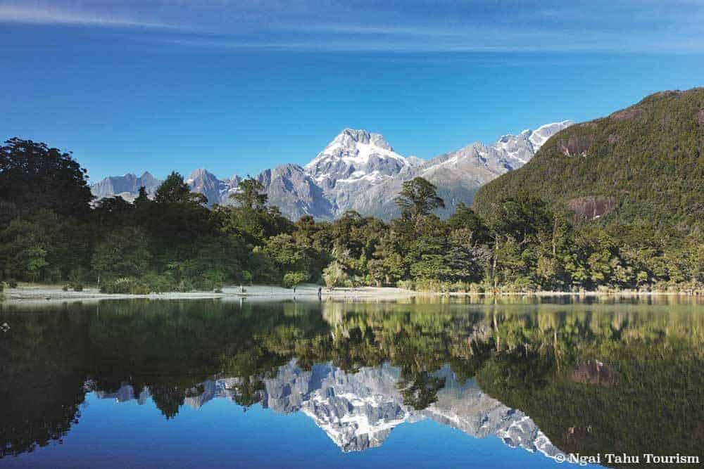 5 Great Walks in New Zealand to Enjoy - Hollyford Track
