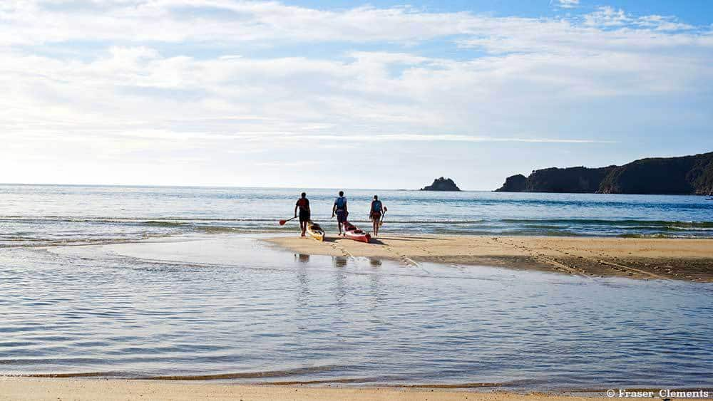 5 Great Walks in New Zealand to Enjoy - Abel Tasman National Park Beach