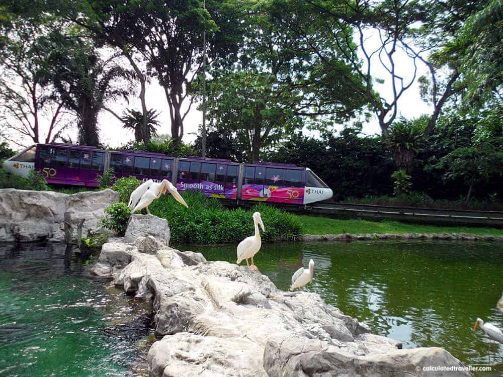 Family-Friendly Animal Fun in Singapore - Jurong Bird Park Monorail