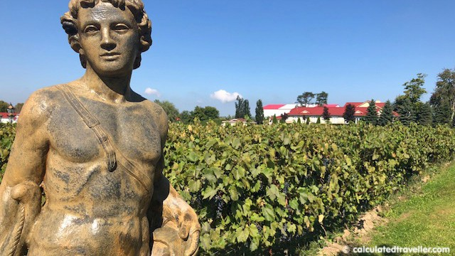 Temperance and Temptation Tour: The Durham Story of Beer Wine and Spirits - Gallucci Winery