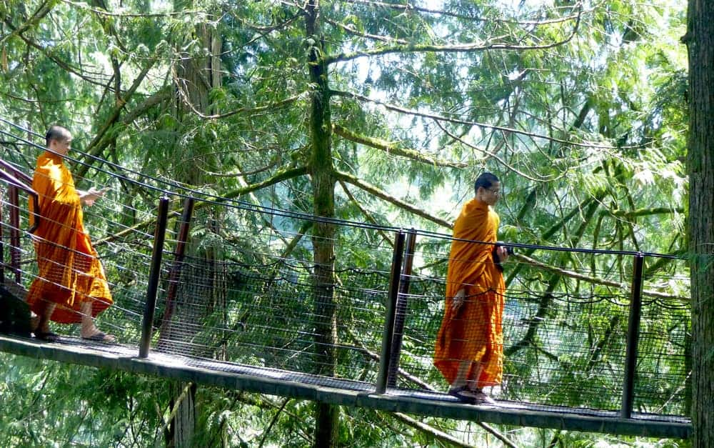 monks on the tree top trail