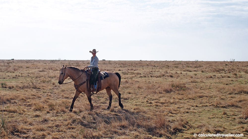 Cowgirls and Cowboys in the West Guide on Horseback