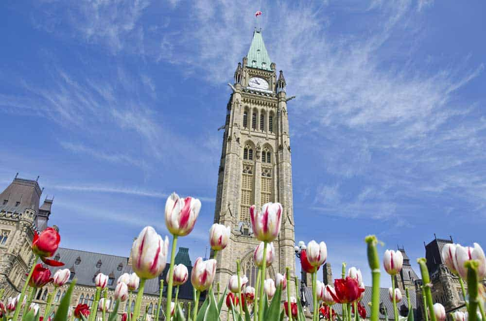 Family-Friendly Things to do in Ottawa with Kids